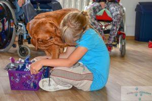 Therapiehund Kira – Einsatz in der Förderschule