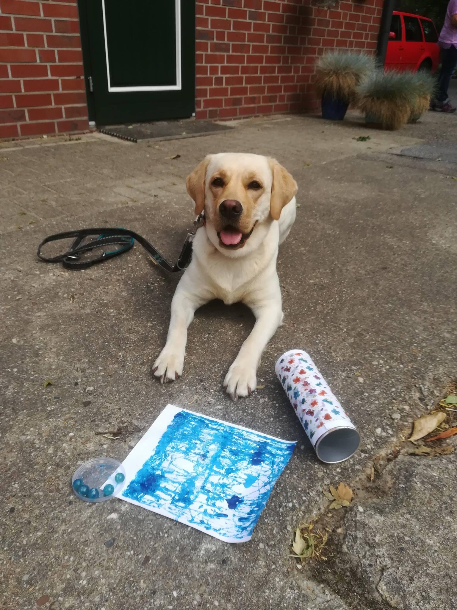 Weiterbildung – Therapiehund wird zum Künstler