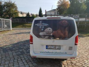 Das Helfende Pfötchen Mobil